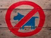 15221282-aucun-signe-animaux-refuses